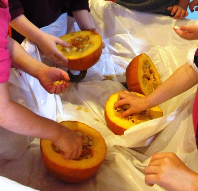 Pumpkin Explorations