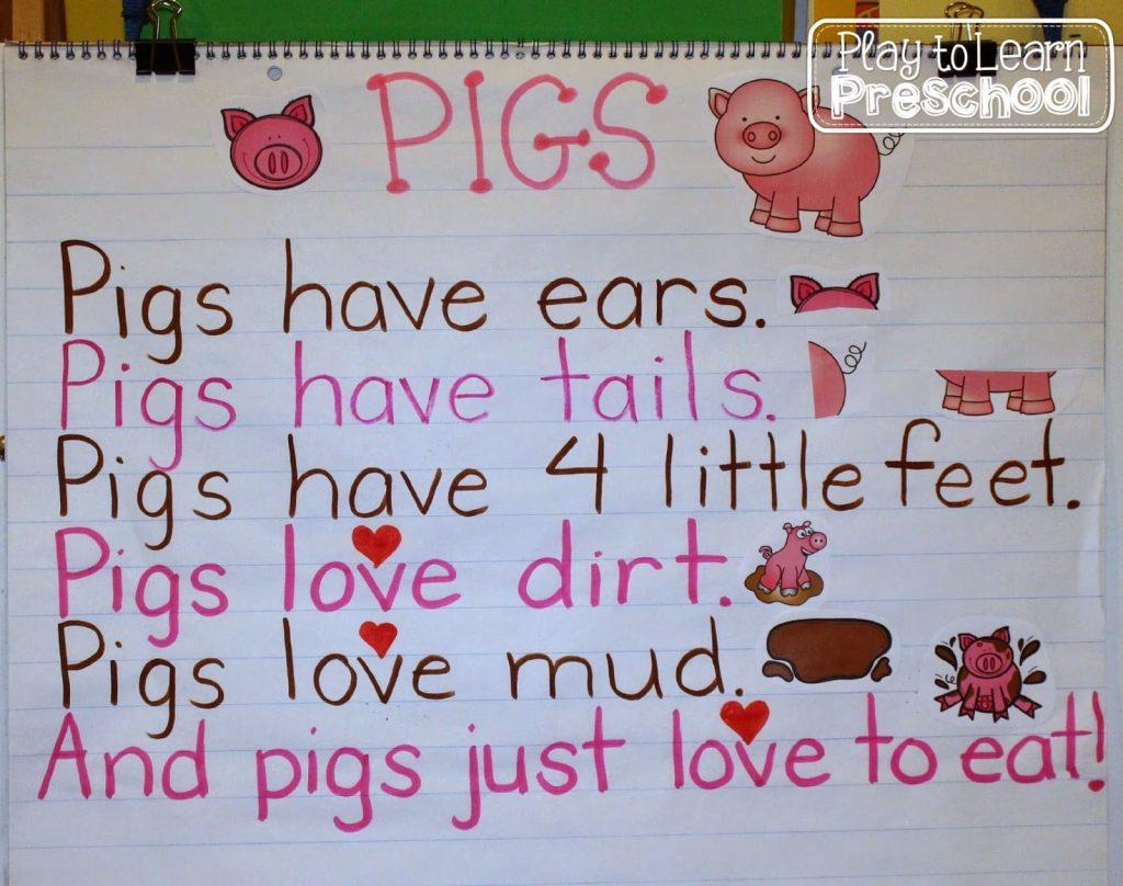 Pigs Aplenty