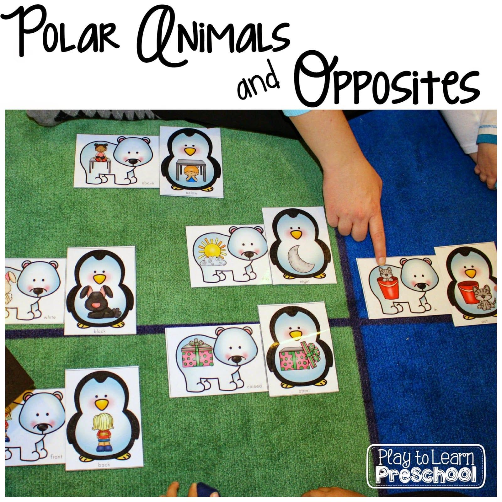 preschool opposites theme polar animals unit play to learn 320