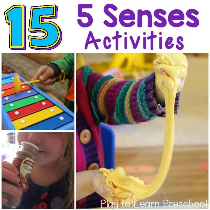 15 Five Senses Activities