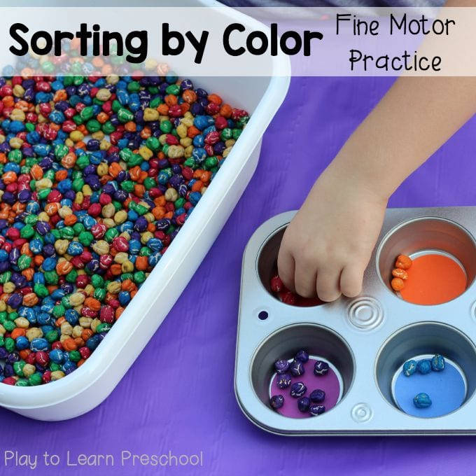 Muffin Tin Color Sorting