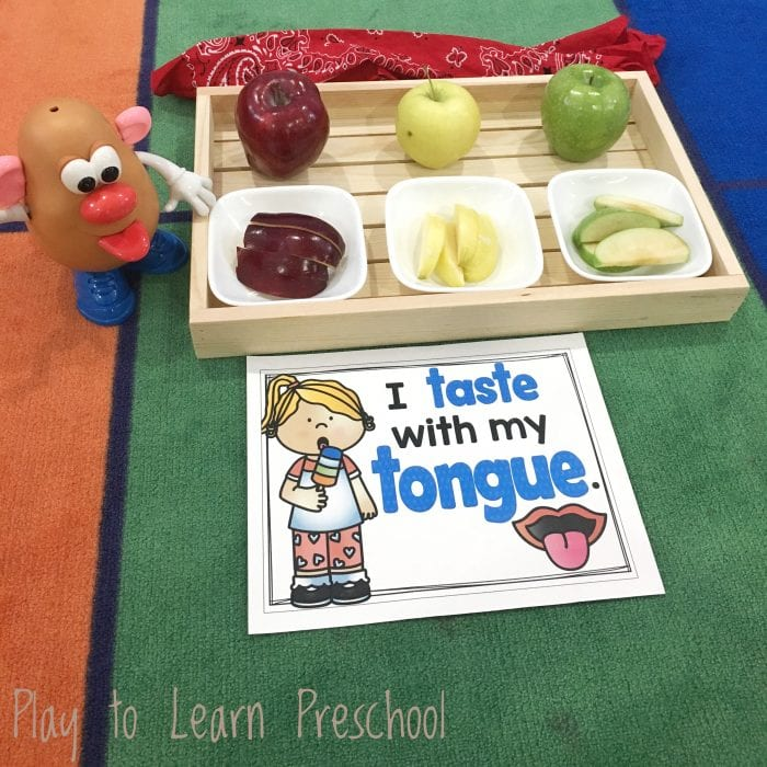 Sense of Taste Apple Taste Test Circle Time Activity for Preschoolers