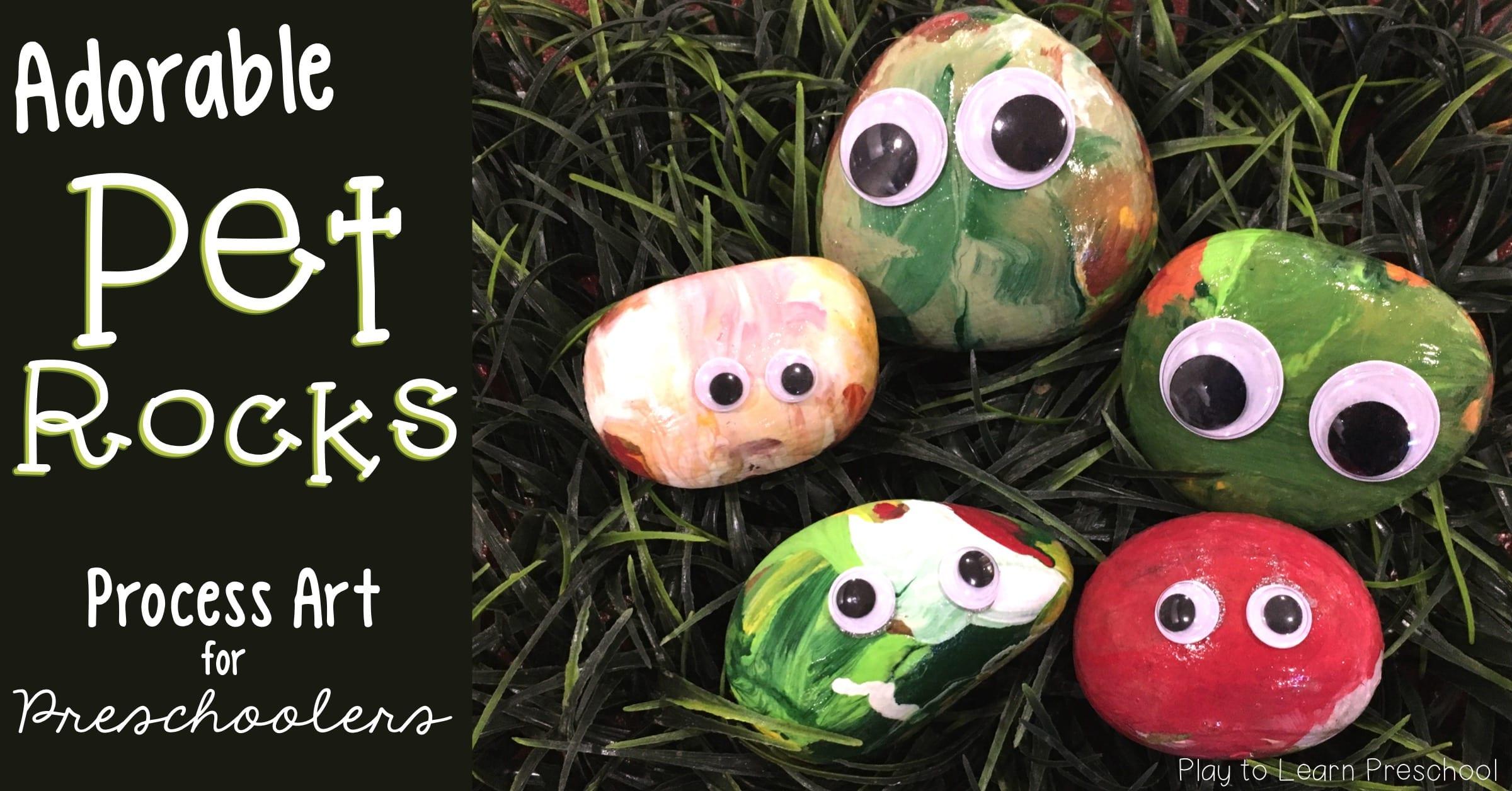 Pet Rock Process Art Project for preschoolers